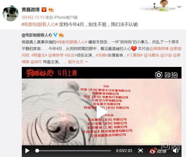 黄磊新作上映 却没想到让离家十年的小土狗回来了