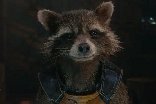 漫威火箭浣熊可能在《银护3》死亡?