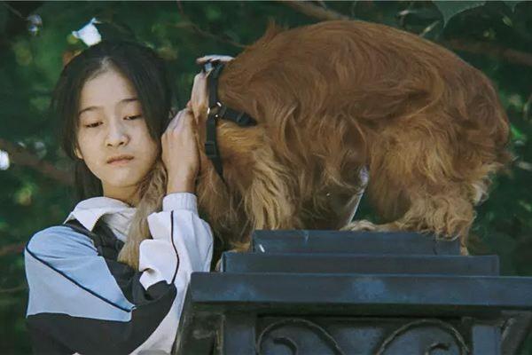 《狗十三》:电影源于现实的无奈