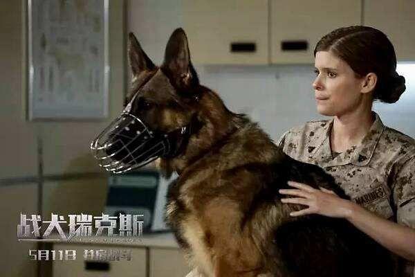 《战犬瑞克斯》:伊战为背景的美国传记电影