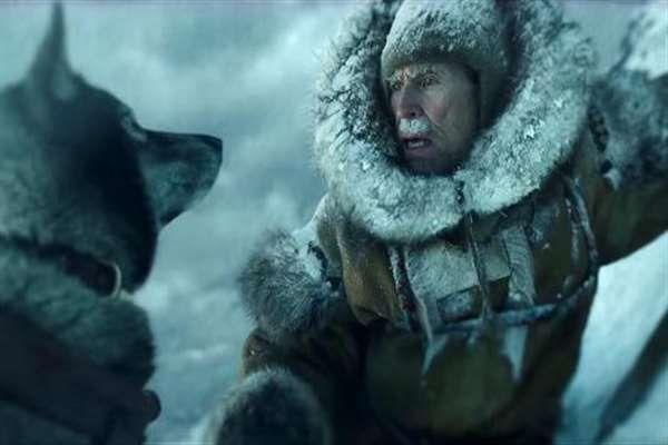 电影《多哥》:有史以来最勇敢的动物